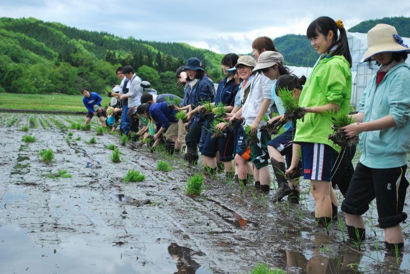 13年目の田植え交流会2018・春(5/27(日)) 参加者募集中‼(5/24まで申込)