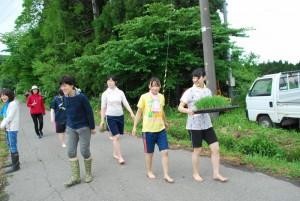 201705taue_nae